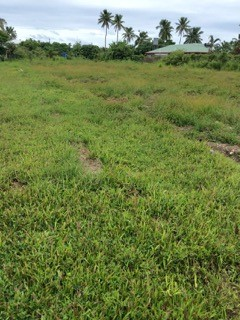 Fangaloto vacant land on Tongatapu